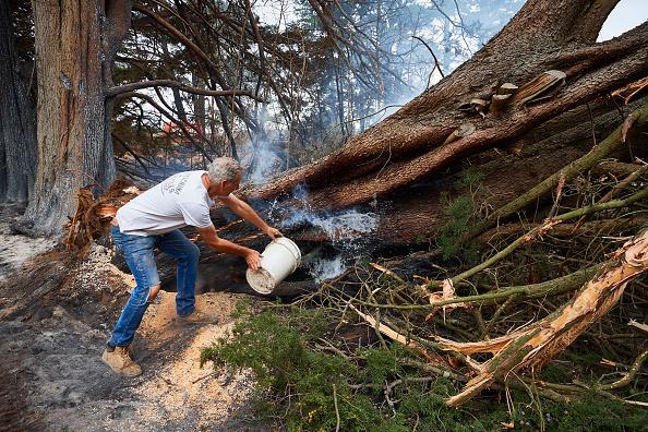 オーストラリア「Hundreds Of Bushfires Continue To Burn Across NSW Despite Easing Conditions」:写真・画像(16)[壁紙.com]