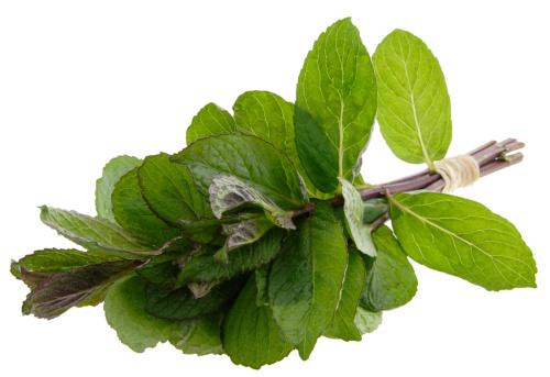 Spearmint「Bundle Fresh Mint」:スマホ壁紙(12)