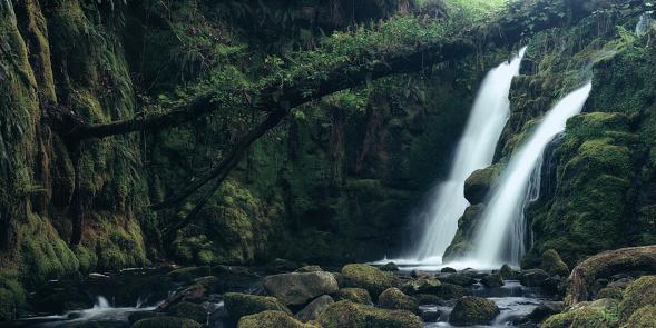 Waterfall「Venford Falls on Dartmoor, Devon」:スマホ壁紙(0)