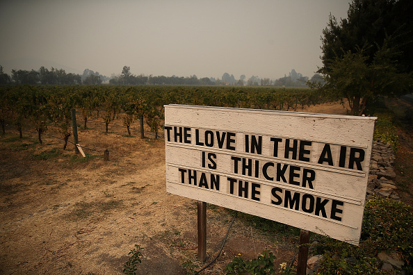California「Multiple Wildfires Destroy Homes, Threaten California Wine Country」:写真・画像(15)[壁紙.com]