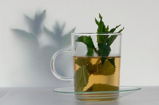 Mint Leaf - Culinary「Peppermint tea」:スマホ壁紙(7)