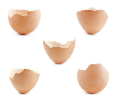 殻「卵の殻」:スマホ壁紙(6)