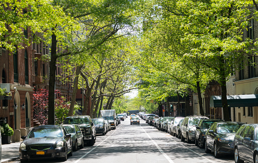 Shadow「Line of fresh green trees surround the street at Upper East Manhattan New York.」:スマホ壁紙(19)