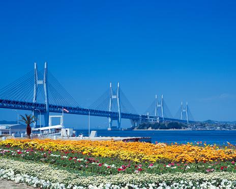 Kagawa Prefecture「Seto Ohashi bridge and flower garden, Sakaide, Kagawa Prefecture, Japan」:スマホ壁紙(10)