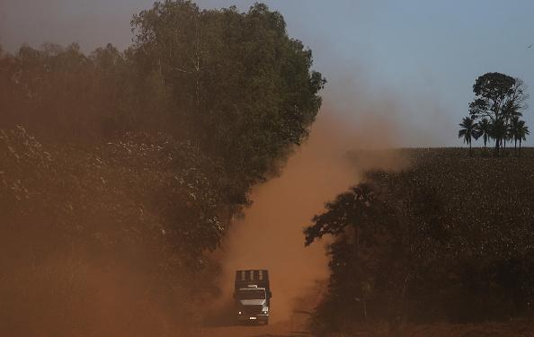 Amazon Rainforest「Fighting Recession, Level of Deforestation in Brazil Reaches Nine Year High」:写真・画像(5)[壁紙.com]