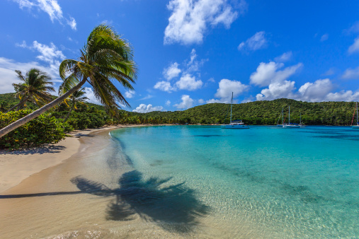 Salt Whistle Bay「Salt Whistle Bay, Mayreau」:スマホ壁紙(7)