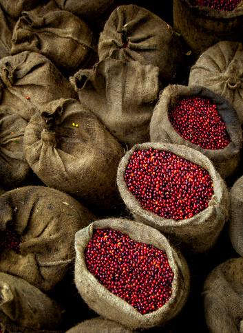 Central America「Bags Of Coffee Cherries, El Salvador」:スマホ壁紙(4)