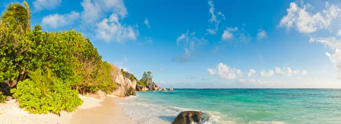 Frond「Paradise beach tropical island ocean shore palm trees panorama Seychelles」:スマホ壁紙(19)