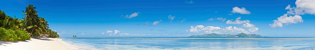 インド洋「ビーチののどかな熱帯の楽園の島の最高のパノラマに広がるラグーンのヤシの木」:スマホ壁紙(15)