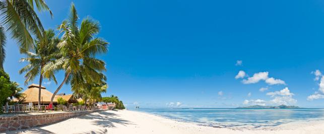 Frond「Paradise beach resort idyllic tropical island palm trees ocean panorama」:スマホ壁紙(8)