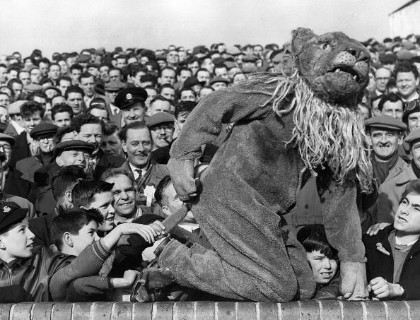キャラクター「Millwall Lion」:写真・画像(6)[壁紙.com]