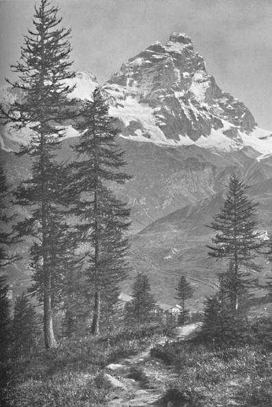 Pennine Alps「The Matterhorn From The Italian Side, Forest Of Brueil, 1917」:写真・画像(0)[壁紙.com]