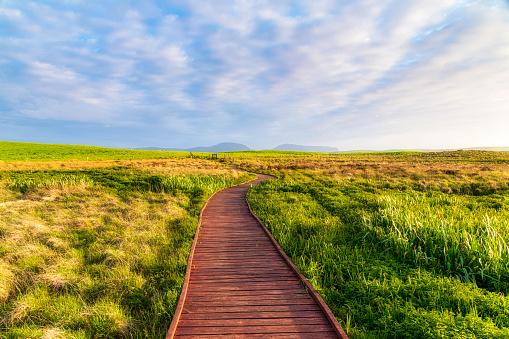 Footbridge「Scotland, Orkney, Loch of Harray, nature reserve boardwalk」:スマホ壁紙(17)
