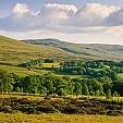 Black Mountain - Wales壁紙の画像(壁紙.com)