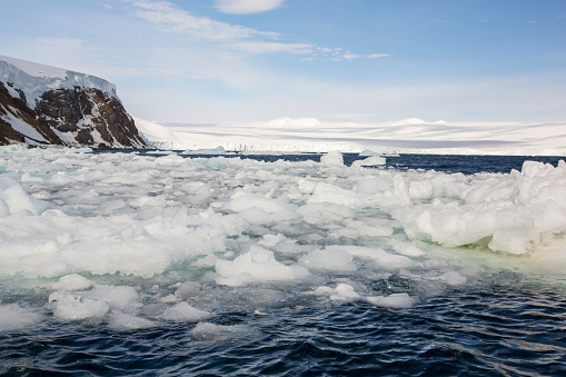 Pack Ice「Melting sea ice at Suspiros Bay on Joinville Island just off the Antarctic Peninsular.」:スマホ壁紙(10)
