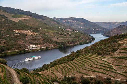 Ship「Cruise through vineyards of the Douro Valley」:スマホ壁紙(0)
