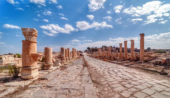 Ancient Civilization「Jordan, View along ancient Roman road lined with columns」:スマホ壁紙(10)