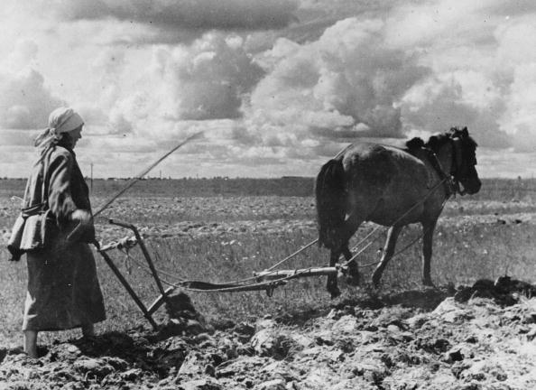 ������ ������「peasant woman is ploughing, Photograph, Russia, 1943」:写真・画像(19)[壁紙.com]