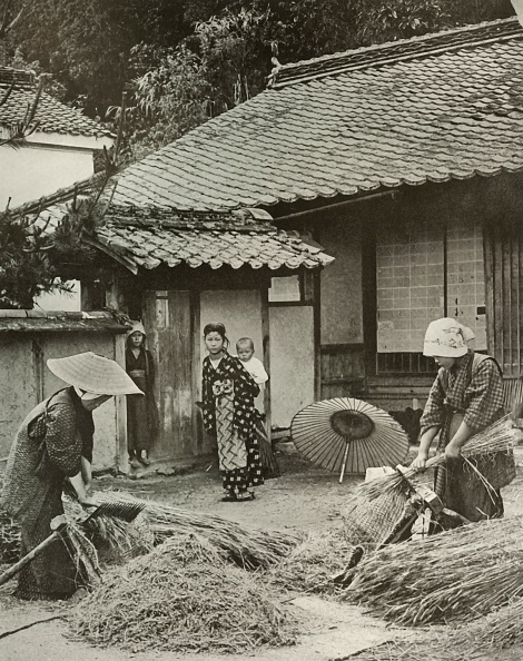 Grass Family「Peasant Women Heading Barley」:写真・画像(16)[壁紙.com]