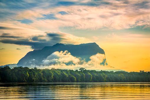 アマゾン熱帯雨林「セロ Yacapana Pasiva 川から、州ベネズエラアマソナス州」:スマホ壁紙(18)