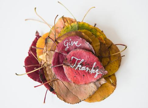 Gratitude「Give Thanks calligraphy on dry autumn leaves」:スマホ壁紙(12)