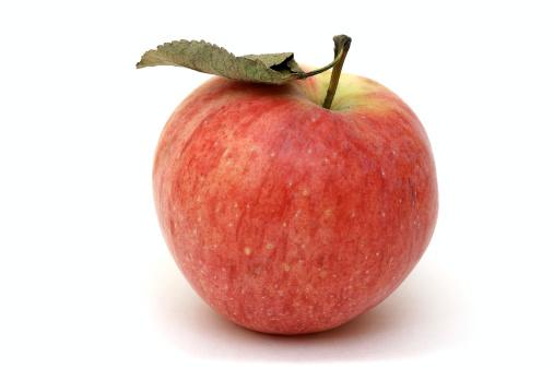 Organic「Apple」:スマホ壁紙(0)