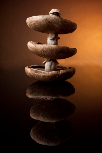 Portobello Mushroom「Portobello Mushrooms on Black Glass」:スマホ壁紙(11)