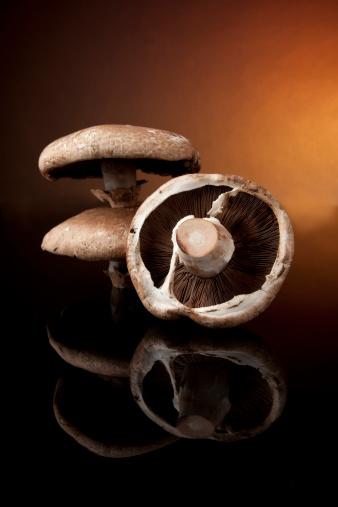 Portobello Mushroom「Portobello Mushrooms on Black Glass」:スマホ壁紙(8)