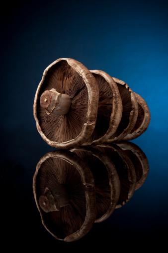 Portobello Mushroom「Portobello Mushrooms on Black Glass」:スマホ壁紙(5)