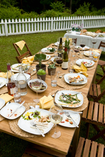 Party - Social Event「 Food at outdoor dinner party in countryside」:スマホ壁紙(7)
