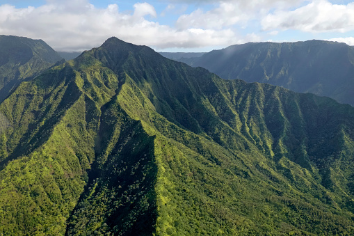 Nature Park「USA, Hawaii, Kauai, Halelea Forest Reserve, aerial view」:スマホ壁紙(1)