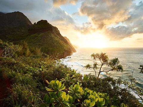 Pacific Coast「USA, Hawaii, Kauai, hiking trail at Na Pali Coast」:スマホ壁紙(3)