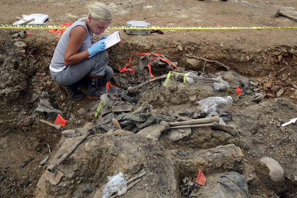 Forensics Experts Work On Exhuming And Identifying Srebrenica Victims:ニュース(壁紙.com)