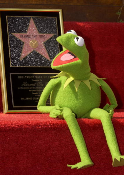 Puppet「Kermit the Frog Gets A Star on the Hollywood Walk of Fame」:写真・画像(6)[壁紙.com]