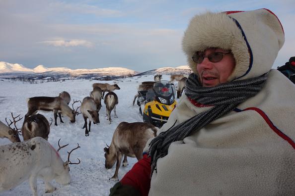 Animal Body Part「Sami Reindeer Herding」:写真・画像(10)[壁紙.com]