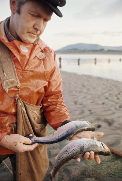 Travel Destinations「Fisherman's Catch」:写真・画像(4)[壁紙.com]