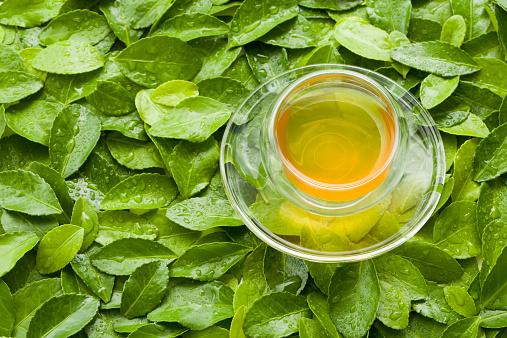 茶葉「A cup of tea on green leaves」:スマホ壁紙(7)