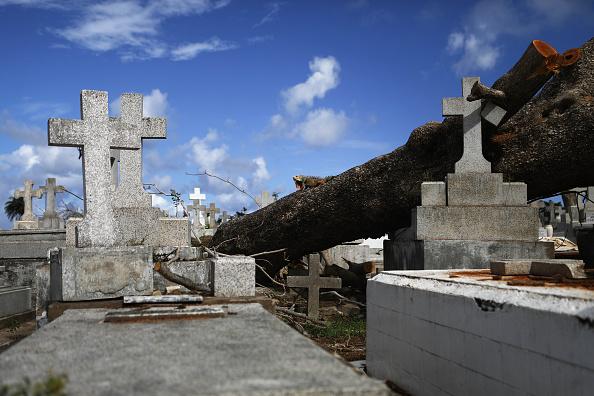 Damaged「Puerto Rico Marks Holiday Season Amidst Slow Hurricane Recovery」:写真・画像(12)[壁紙.com]