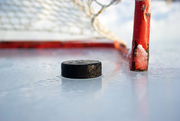 Hockey Net and Puck:スマホ壁紙(壁紙.com)
