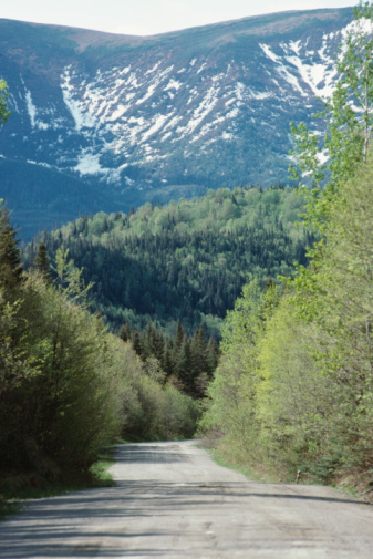 Footpath「Tree lined road leading to mountain, Quebec, Canada」:スマホ壁紙(16)