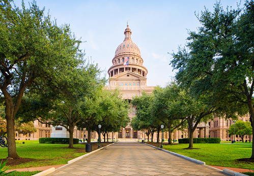 Capital Cities「Tree lined pathway to Texas Capitol in Austin」:スマホ壁紙(9)