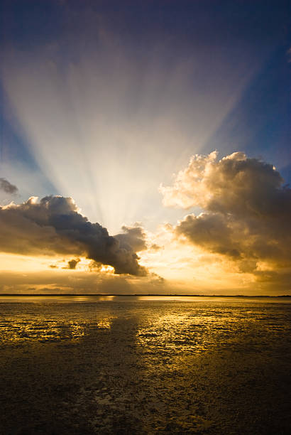 Mystical sun rays from a cloudy morning sky:スマホ壁紙(壁紙.com)