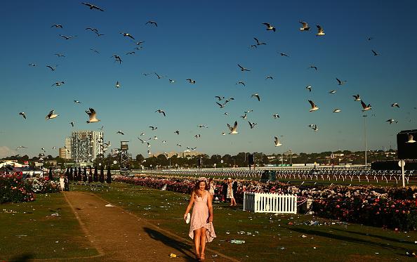 Scott Barbour「Revellers Enjoy Stakes Day Festivities」:写真・画像(13)[壁紙.com]