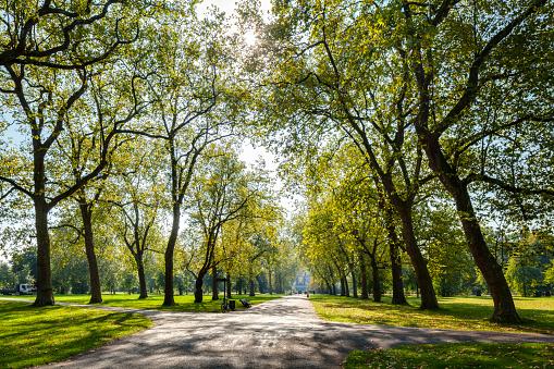 Green Color「Hyde Park」:スマホ壁紙(17)