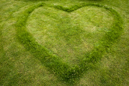 ハート「Lawn mowed in shape of heart」:スマホ壁紙(3)