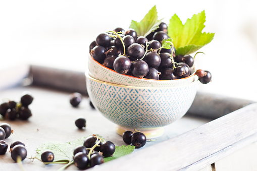 Black currant「Bowls of black currants with leaves on a tray」:スマホ壁紙(14)