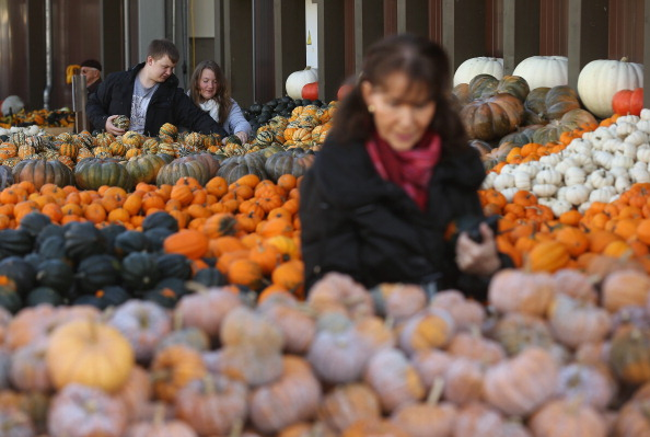 Decoration「October Is Pumpkin Season」:写真・画像(13)[壁紙.com]