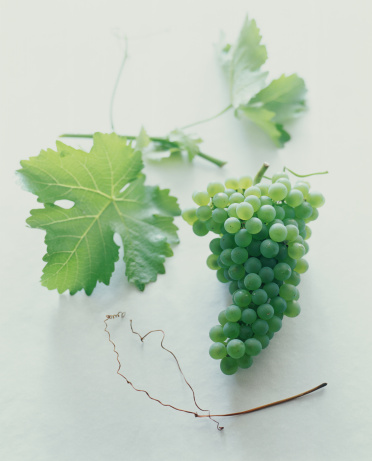 Grape「A bunch of green grapes with leaves.」:スマホ壁紙(0)