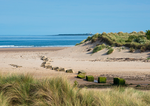 World War II「Second world war concrete sea defence blocks on coast at Bamburgh, Northumberland, England. Longstone lighthouse in background famous for sea rescue by Grace Darling and her Father」:スマホ壁紙(13)