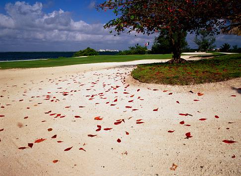 Sand Trap「Sand Trap at Pok-Ta-Pok Club de Golf」:スマホ壁紙(10)